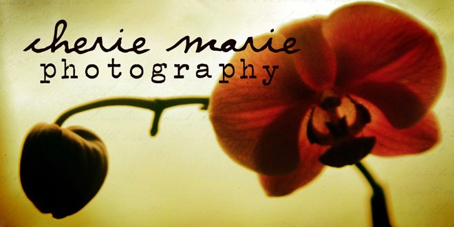 cherie marie photography
