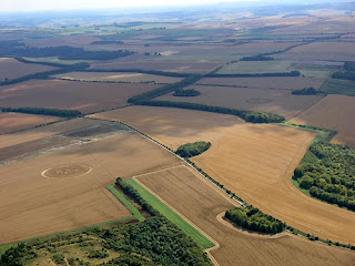 Crop Circle in Woolstone Hill pics gallery