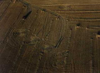 Crop circle di Outlook, Saskatchewan, Canada pictures gallery