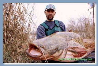 The Giant Cat Fish images gallery