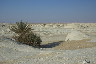 amazing phenomena in the world : White Desert in egypt
