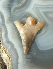 To learn about arrowhead collecting on the web click on this point.