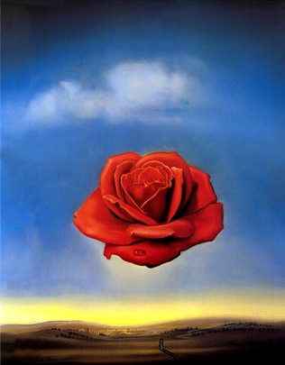 dali wallpaper. Dali - The Meditative Rose