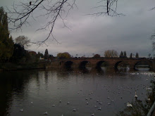The River Severn, Worcester