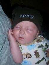 Brody Austin Stokes