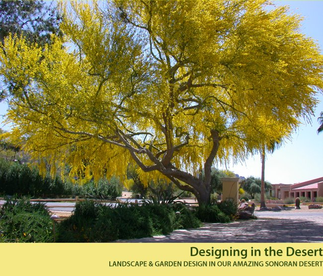 Designing in the Desert