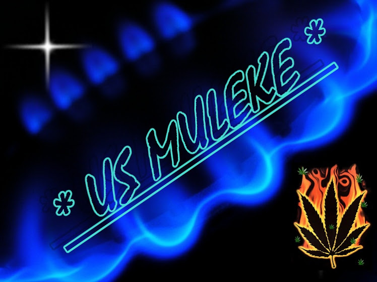 PIO REGGAE - US MULEKE