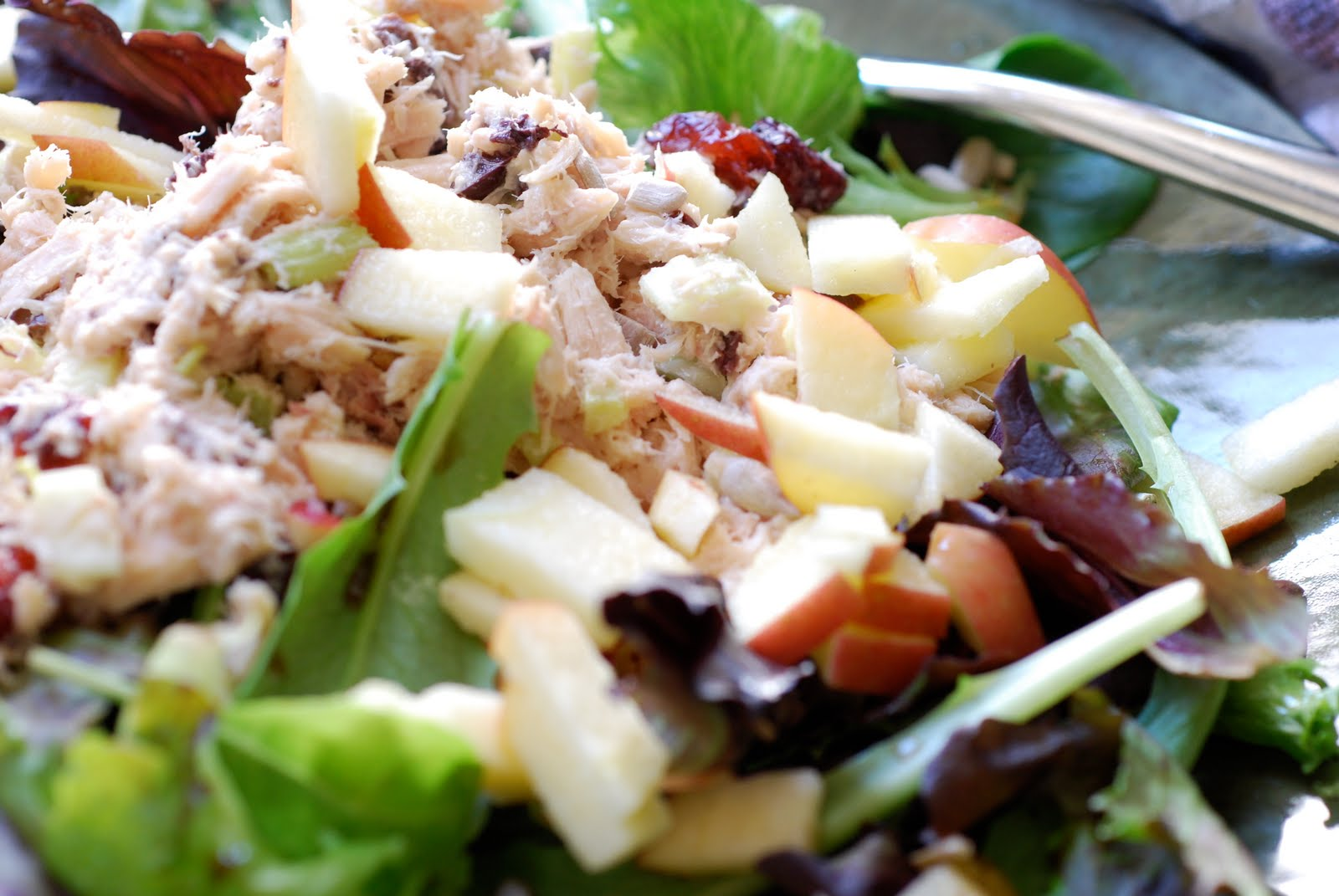 recipes best tuna fish salad