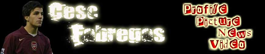 cesc fabregas pictures-cesc fabregas profile-cesc fabregas news-cesc fabregas video