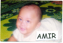 My 4th Boy -Amir Farhan