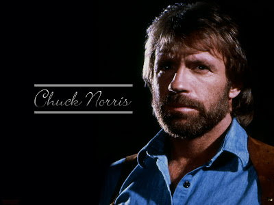 james christensen wallpaper. 3 WALLPAPERS DE CHUCK NORRIS 1024x786
