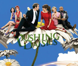 Blog Pushing Daisies no Orkut