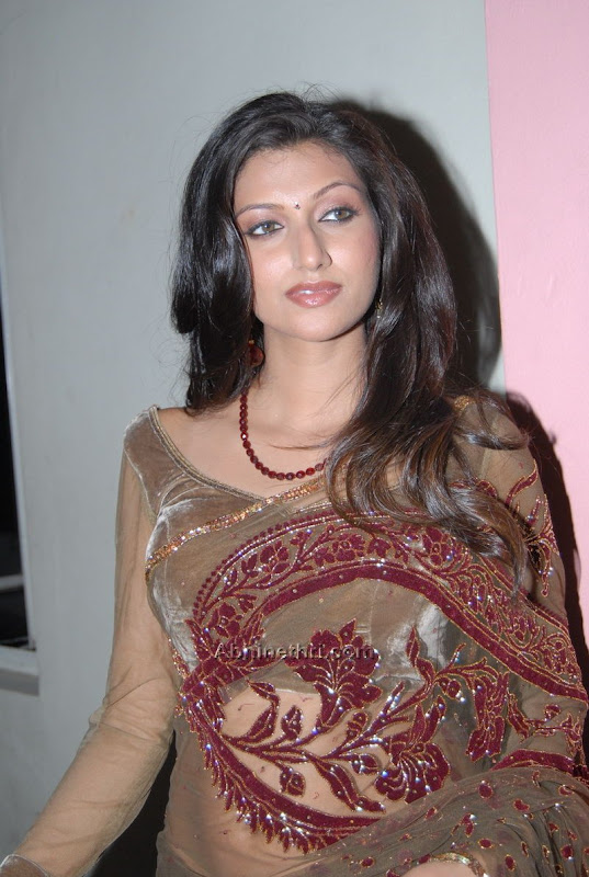 Hamsa Nandini Glamourous In Saree gallery pictures