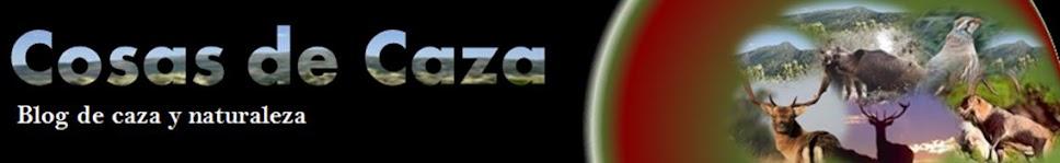 MIS COSAS DE CAZA | COTOS CAZA | RELATOS CAZA | NOTICIAS CAZA | CAZA MAYOR | CAZA MENOR |