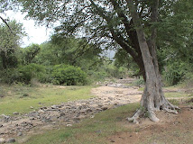 Erkam Stream Where P Sriniwas IFS martyred by Veerappan in 1992