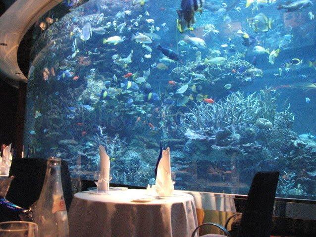 Paradisedestinys for Hoteles mas lujosos del mundo bajo el mar
