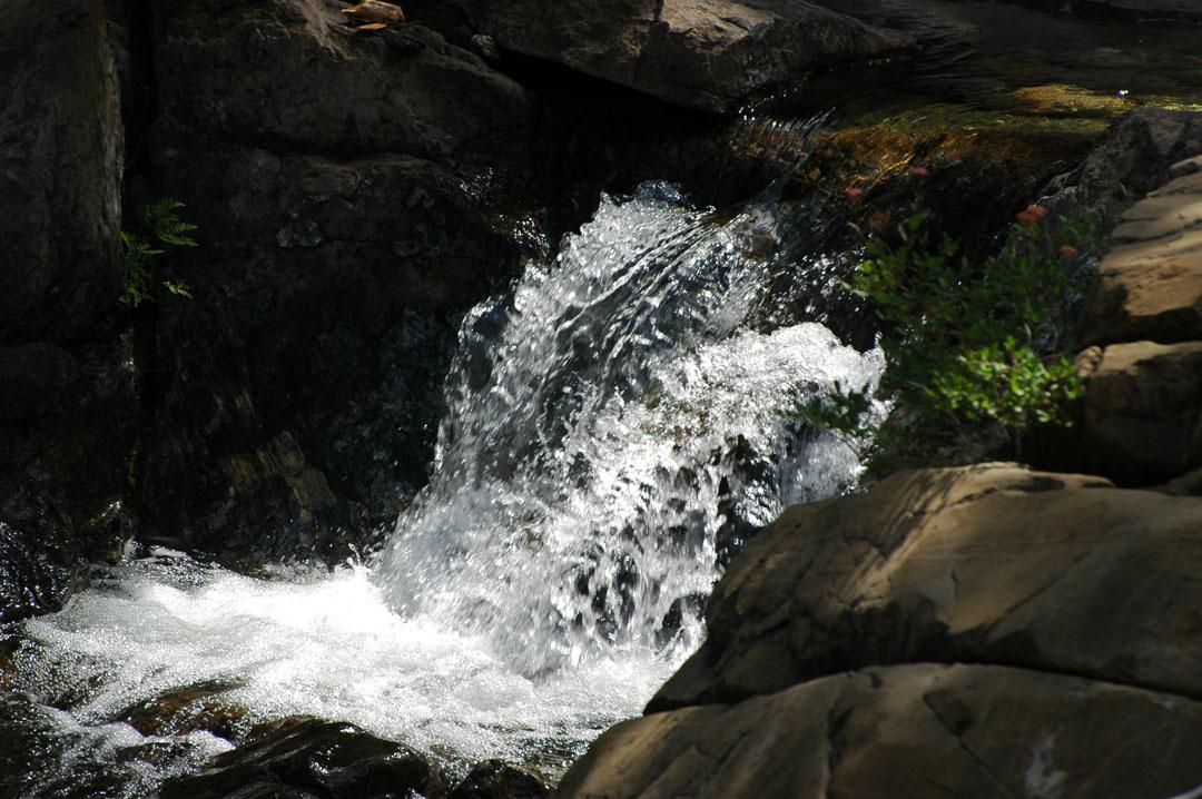 [sacto+river+2]