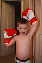 My Little Boxer