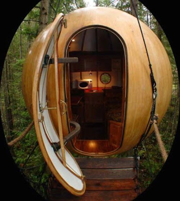 Calvin S Canadian Cave Of Coolness Coolest Treehouse Ever