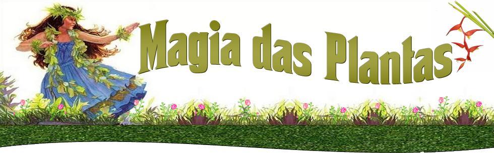 Magia das Plantas