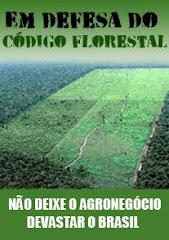 Defender o meio ambiente