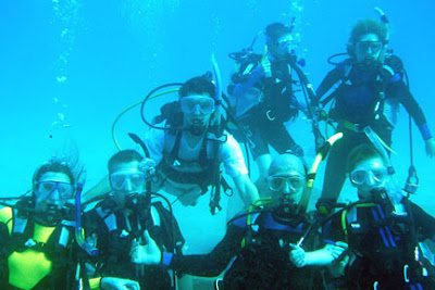 Dive Family
