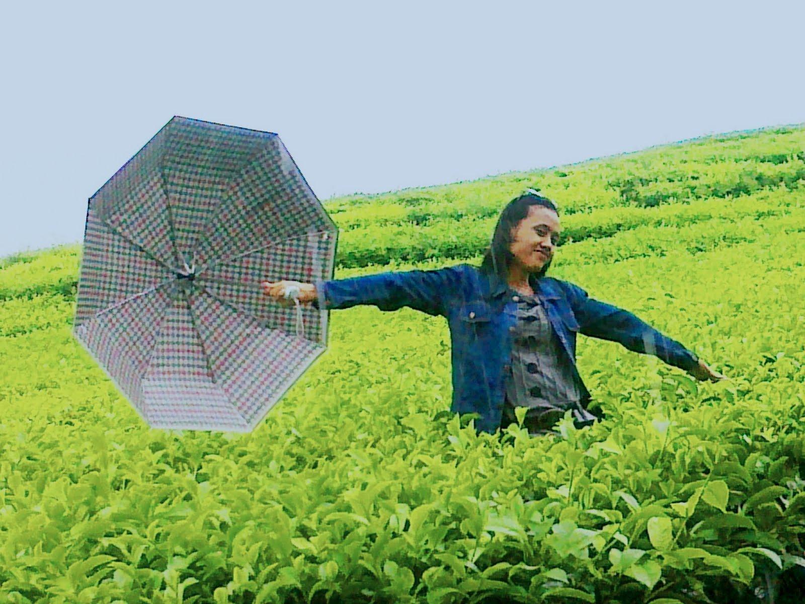 Gadis Sumatera Selatan