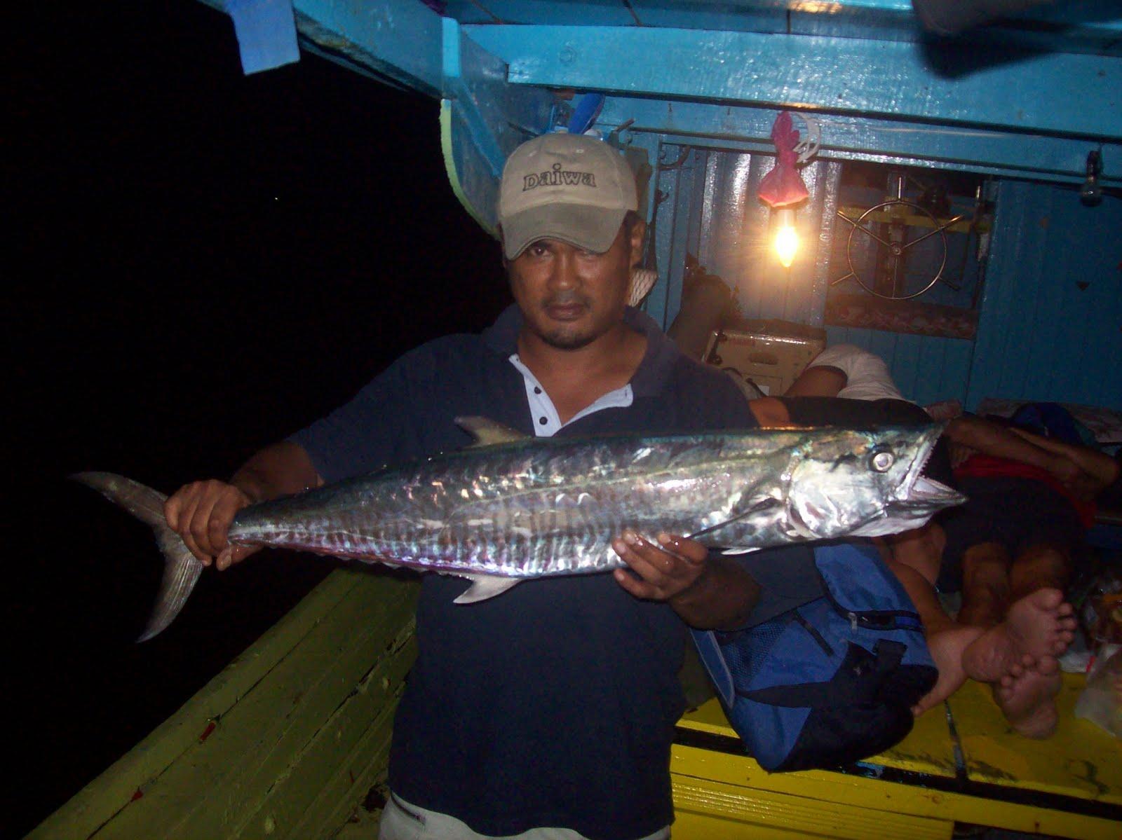 Fishing Equipment May 2010 Umpan Pancing Soft Tiddler Luminous Gid Bro Yang Peramahikan Apo Tu