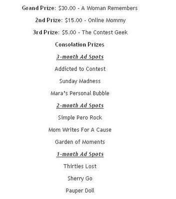 blog contest grand prize winner