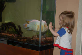 She loved that fish, but he hated her.  He wanted to chomp on her nose through the glass