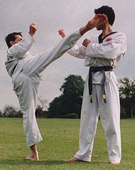 Taekwondo History - World Martial Arts Academy