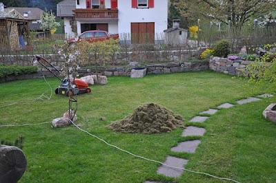 Squarciomomo disperazione erbosa - Sacchi di terra per giardino ...