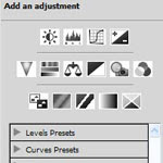 Adjustment Panel in Photoshop CS4