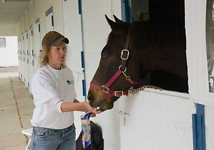 "Video link, ""Covert Action"", in Secretariat's old stall"