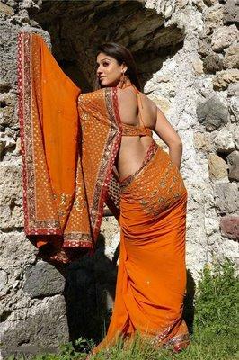 south indian mallu actress NAYANTHARA IN bikini wet SAREE image gallery