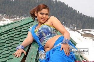 south indian mallu actress sajith betti hotand wet saree imgae showing deep navel and cleavage