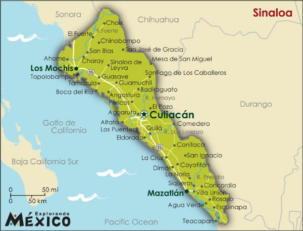 cartel de sinaloa. The Sinaloa Cartel (Pacific