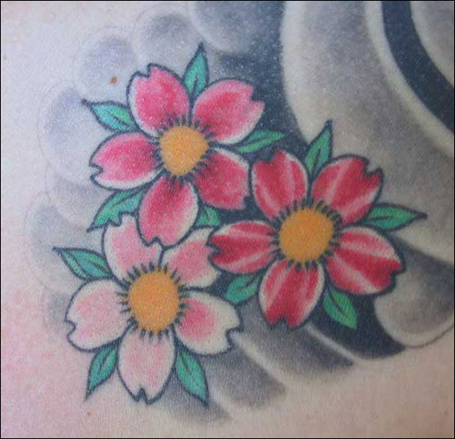 cherry blossom tattoo designs. Cherry Blossoms Tattoo Designs
