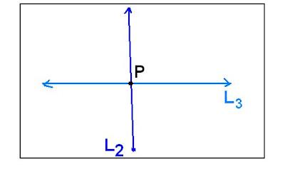 tienen todos sus puntos en común; se trata de la misma recta