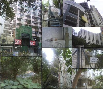 走近糖心風暴中常在心的家, 香港第一個屋邨