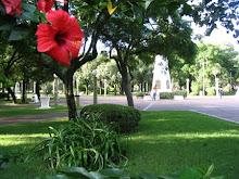 Plaza Libertad Sunchales
