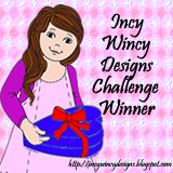 I WON at Incy Wincy Designs!