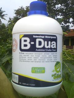 hormon organik b-dua