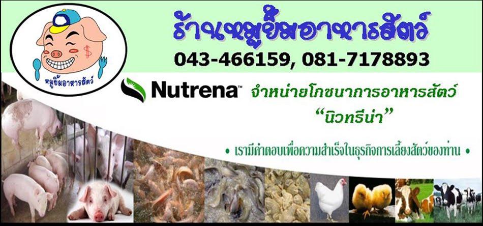 Nutrena_Pet food