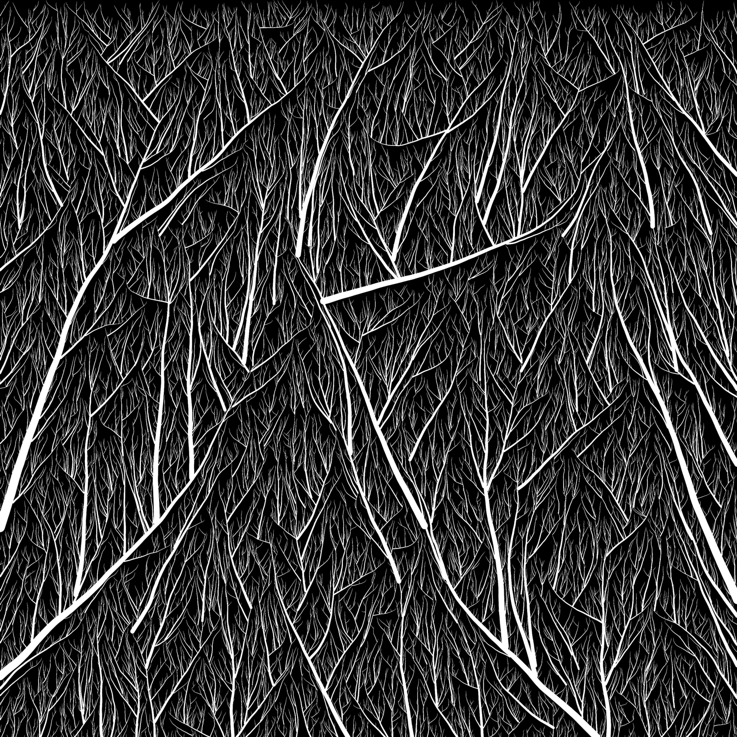 Drawing Lines In Processing : Elle ruth gound monochromatic mathematical art