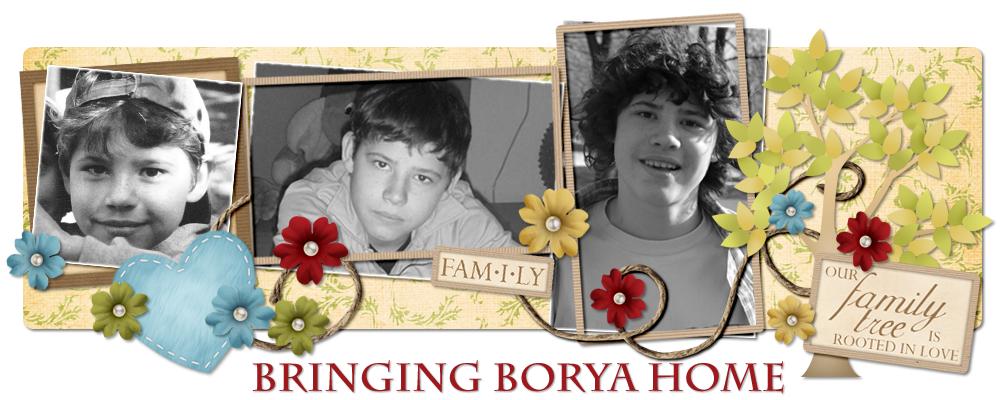 Bringing Borya Home