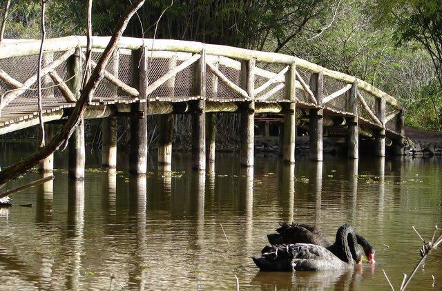 fotos jardim botanico porto alegre : fotos jardim botanico porto alegre:Por Dentro em Rosa: Jardim Botânico de Porto Alegre
