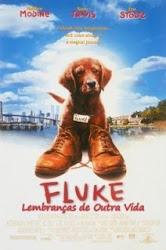 Baixar Filme Fluke Lembranças de Outra Vida (Dublado) Gratis