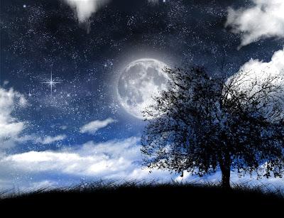 POEMAS SIDERALES ( Sol, Luna, Estrellas, Tierra, Naturaleza, Galaxias...) - Página 2 Lua-estrelas-nuvens-paisagem-%25C3%25A1rvore