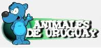Blog Animales de URUGUAY
